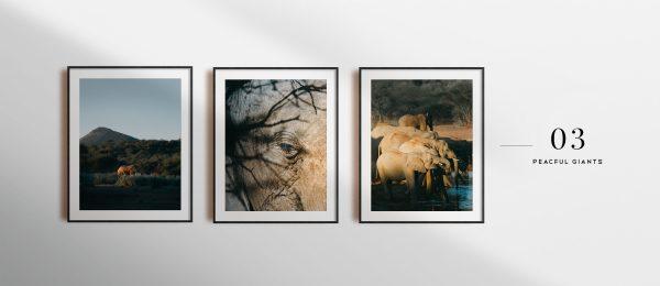 Prints - 03 — Peaceful Giants