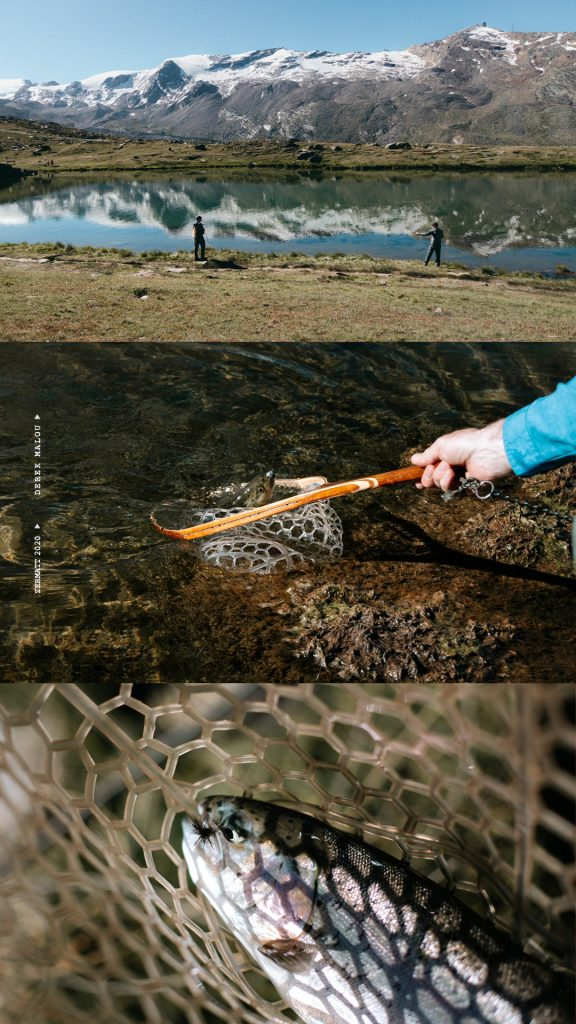 Fly fishing in Zermatt - Trout