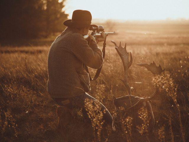 Fallow deer hunter