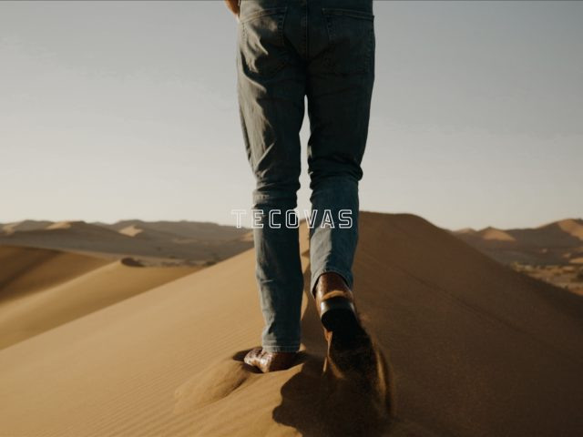 DMalou x Tecovas - Desert