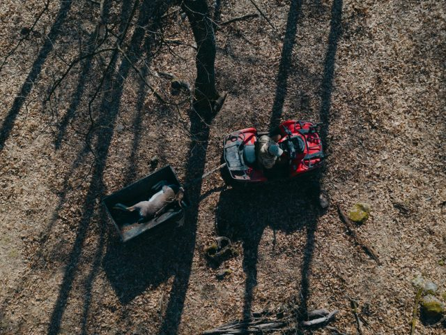 top down ATV with fallow buck