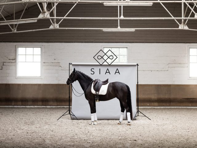 SIAA Horsewear